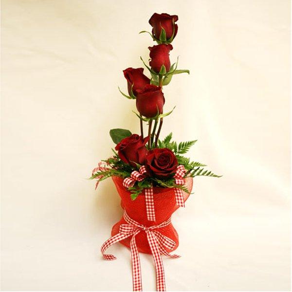 6 adet kırmızı güllerden hazırlanmış buket