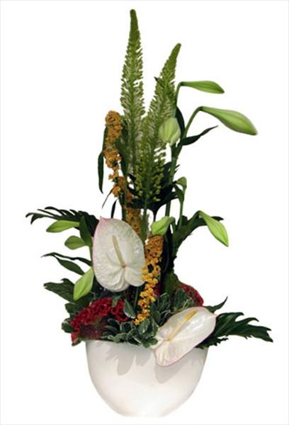 Taze çiçeklerden aranjman