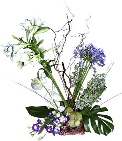 Mavi ve beyaz mevsim çiçeklerinden aranjman