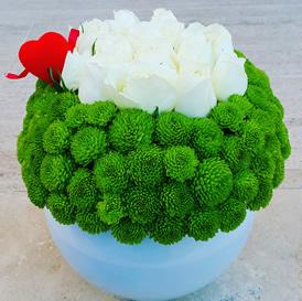 Yeşilin beyaz ile dansı /Ürünler 1 adet beyaz cam fanus 13 adet beyaz gül ve  yeşil kasımpatılar