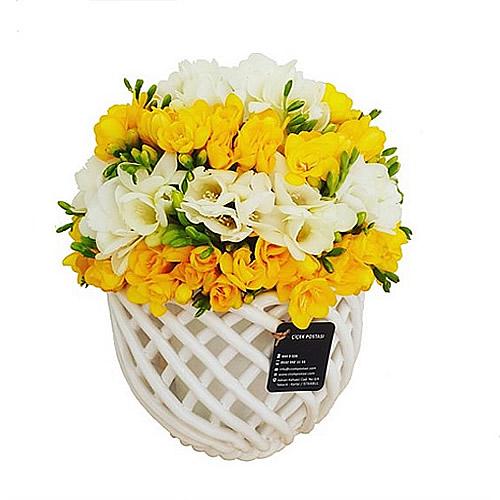 Muhteşem kokusu ile frezyalar / örgü seramik vazo içerisinde ithal beyaz ve sarı frezya ile hazırlanmış butik tasarım aranjman