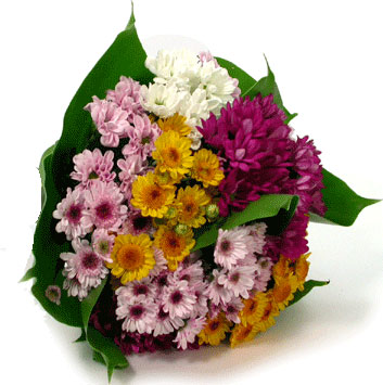 Renkli papatya kırçiçekleriyle hazırlanmış buket