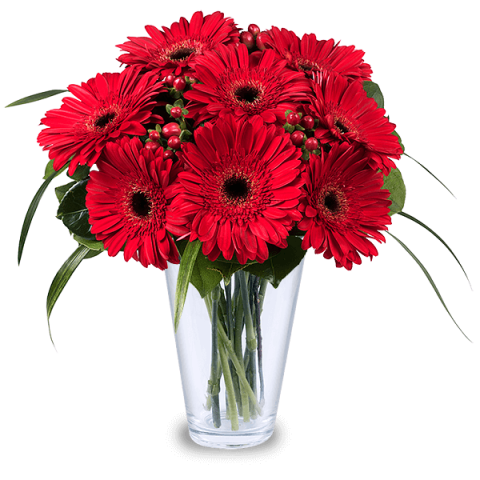 Kırmızı cerbera aranjmanı /10 adet kırmızı cerbera ve mevsim çiçeklerinden hazırlanmı cam vazo aranjman