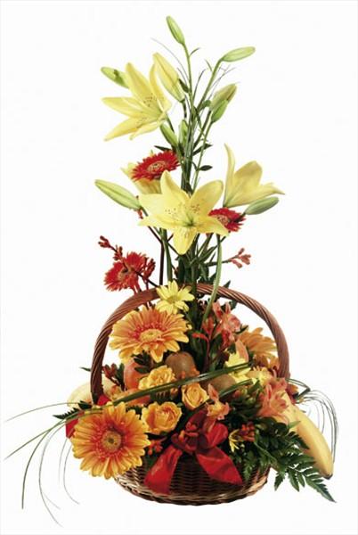 Meyveler & çiçek sepeti