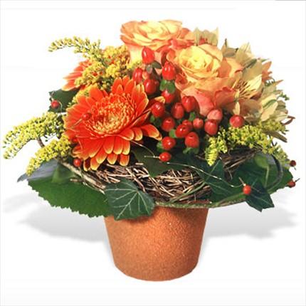 Mevsim çiçeklerinden farklı tasarım