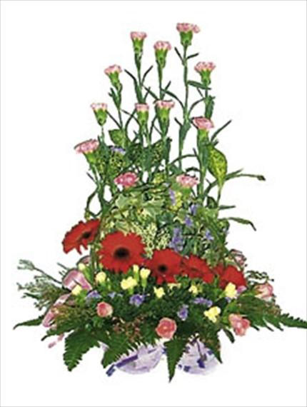 Mevsim çiçekleriyle özel dizayn edilmiş aranjman