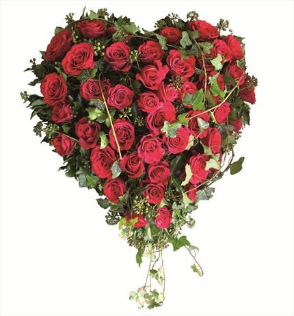 Kalpli cenaze için Serpme çiçek