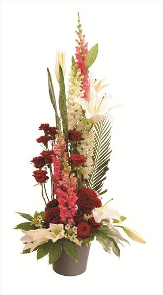 Kırmızı ve beyaz tonlarda uzunboylu çiçek aranjman