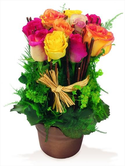 Renkli güllerden hazırlanmış grup aranjman