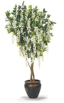 Yapay akasya ağaç küp saksıda dekore edilmiş ortalama boy(160-190 cm)