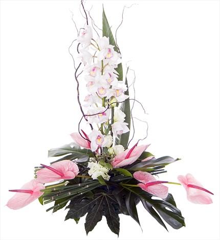 Orkide ve antoriumlardan hazırlanmış şık aranjman