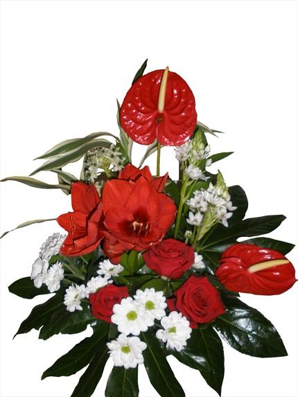 Kırmızı ve beyaz çiçeklerle aranjman