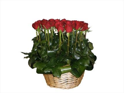 Kırmızı güllerden sepet aranjman
