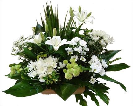 Sandık içerisine beyaz mevsim çiçeklerinden hazırlanmış aranjman