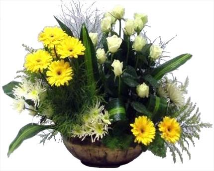 Sarı ve beyaz mevsim çiçeklerinden aranjman