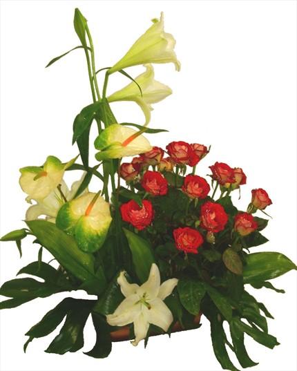 Kırmızı güller ve mevsim çiçeklerinden hazırlanmış sepet aranjman