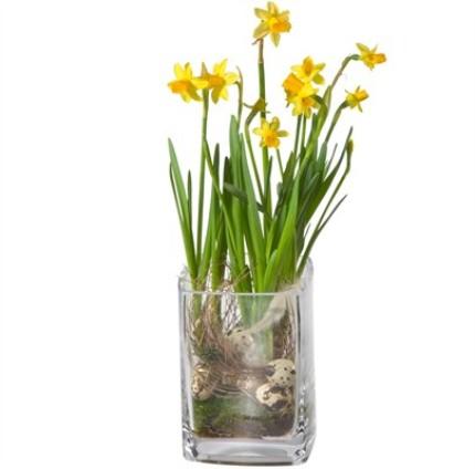Bahar çiçeklerinden hazırlanmış aranjman