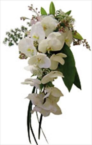 Beyaz mevsim buketi