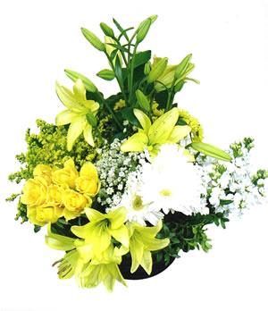 Sarı ve beyaz mevsim çiçeklerinden hazırlanmış sepet aranjman