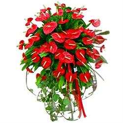 """Kırmızı antoryumlarla hazırlanmış ferforje aranjman """"vip ürün"""" (160-180 cm)"""