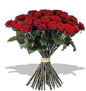 19 adet özel seçilmiş kırmızı güllerden buket