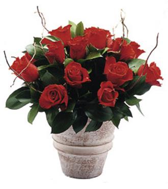 Seramik vazo içerisinde kırmızı güllerden hazırlanmış aranjman