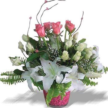 Pembe beyaz güllerden ve beyaz lilyumlardan hazırlanmış  aranjman