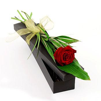 Özel kutu içerisine hazırlanmış kırmızı kutu gül