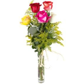5 farklı renkte güller