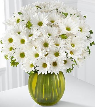 Kır çiçeklerinden papatya ile hazırlanmış cam vazo aranjman
