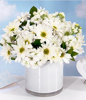 Beyaz kırçiçek ve papatya ile  hazırlanmış aranjman