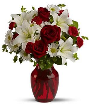 Cam vazoya kırmızı su ile hazırlanmış kırmızı güller ve lilyumlar