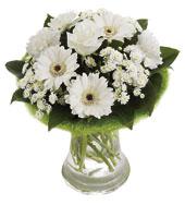 Beyaz mevsim çiçeklerinden hazırlanmış arnjman