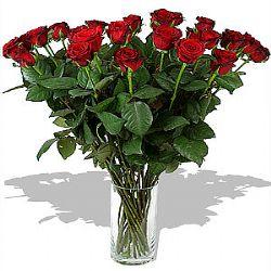 Cam vazoya 15 adet kırmızı güllerle hazırlanmış arajman
