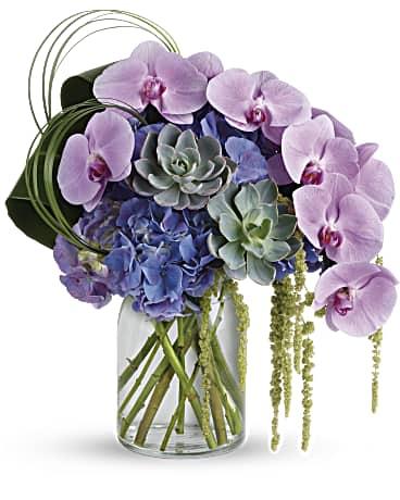 Mor orkidelerden aranjamn /1 mor orkide sukulent ve mevsim çiçeklerinden hazırlanmış aranjman