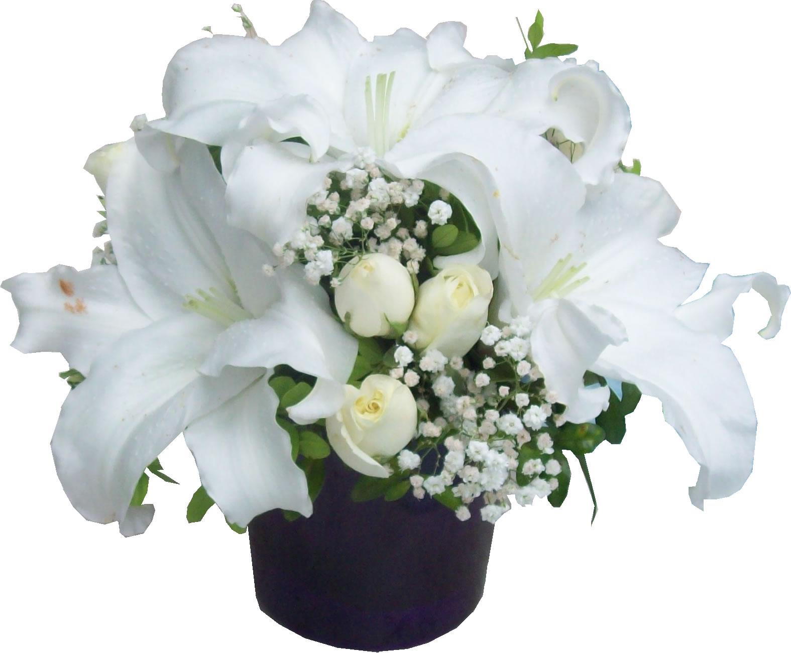 Mor vazoda beyaz mevsim çiçeklerinden aranjman
