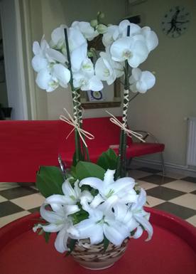 Küp saksıda dekore edilmiş 2 dallı beyaz orkide ve lilyumlar (70-90cm)