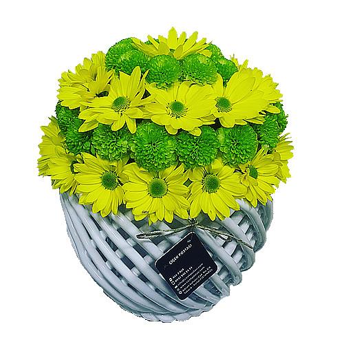 Sarı Papatya seramoni/özel ithal örgü seramik vazoda sarı ve yeşil papatyalardan hazırlanmış butik tasarım
