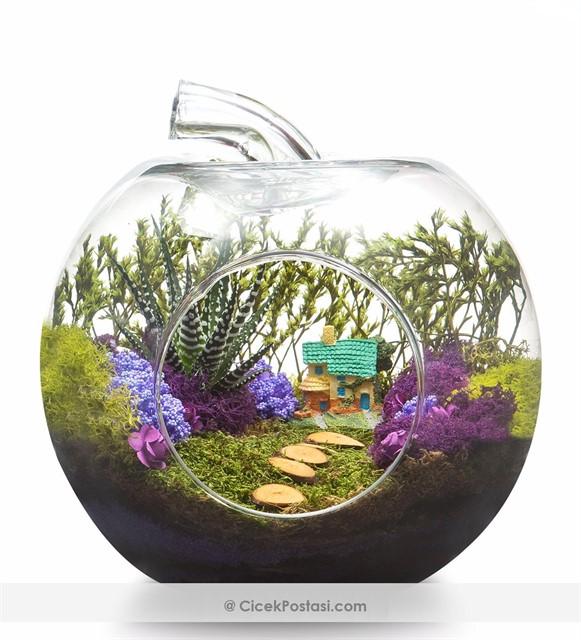 Yeşil doğa teraryum /Tasarım içerisinde 1 adet canlı ve dayanıklı ithal bitki bulunmaktadır 1 adet villa ev şoklanmış yosunlar ve kurutulmuş bitkilerle dekore edilmiştir Elma fanus boyutu: yükseklik 23 cm, çap: 25 cm'dir. Not: Kullanılan cam, üfleme cam olduğu için, her bir cam kendine özeldir ve farklılıklar gözlenebilir. ürünün yapımı esnasında sap kısmının kesim noktası eğimli bir görüntüye sahiptir, kırık değildir.